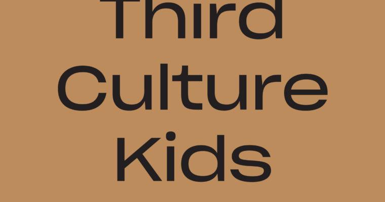 I klem mellom kulturer: Om ikke å være norsk nok. Muslimsk nok. Third Culture Kids av Aon Raza Naqvi (red.)
